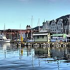 Bergen Harbour -- Reflections .2 by Larry Lingard-Davis