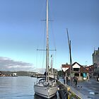 Bergen Harbour -- Rain Gone,  Sun Out  .2 by Larry Lingard/Davis