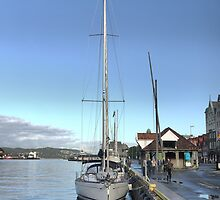 Bergen Harbour -- Rain Gone,  Sun Out  .2 by Larry Lingard-Davis