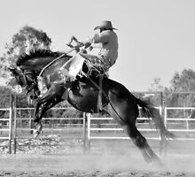 2014 Calendar. RODEO. Extreme Broncs by Barb Jean. www.outbackphotoart.com by Barbara  Jean