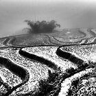 Paddies in the mist by magnetik