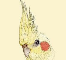 Yellow Lutino Cockatiel by Joey Kuipers