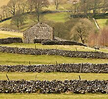 Barn and Drystone Walls Littondale by Nick Jenkins