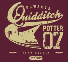 Quidditch - Harry Potter by kyubara