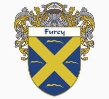 Furey Coat of Arms/Family Crest by William Martin