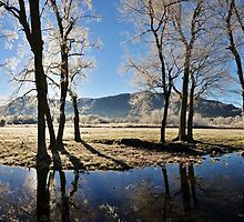 frosty view off sparks by dc witmer
