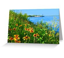 Summer in Toronto park Greeting Card
