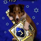 Hanukkah Sheltie by jkartlife