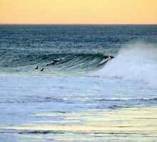 Surfs Up by amimages