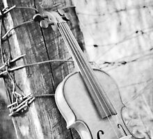 Violin Rural by Kimberose