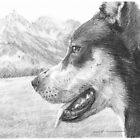 Mountain dog drawing by Mike Theuer