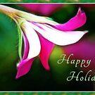 Happy Holidays! by Anita Pollak