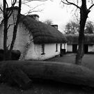 Irish Cottage by Desaster