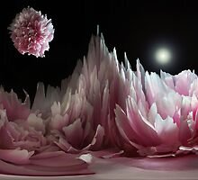 Planet Peony. by Terence Davis