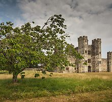 Titchfield Abbey, Hampshire, England. UK by Heidi Stewart