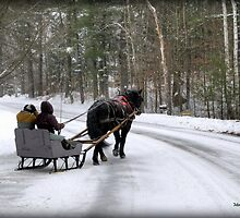 Sleigh Ride by Monica M. Scanlan