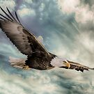 FLIGHT OF AN EAGLE by Rob  Toombs