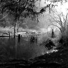 Linley Valley Park, Nanaimo, BC by rsangsterkelly