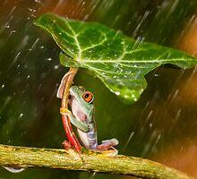 Ohh No... :( Raining by kutub15s