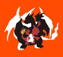 Pokemon Charizard Y by CharlieGoh