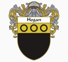 Hogan Coat of Arms/Family Crest by William Martin