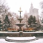 Winter in the City - Manhattan by Vivienne Gucwa