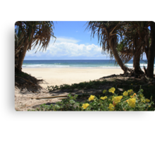 Pathway to Dreamtime Beach  Canvas Print