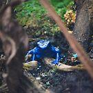 Blue Poison Dart Frog  by Jeanie93