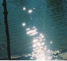 Sparkling Lake by Jonathan Lynch