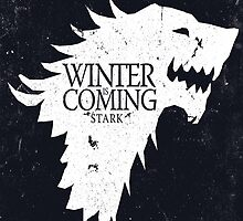 Winter is Coming - Game of Thrones by AbsoluteLegend