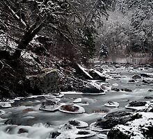 Winter Waters by Envision Photography