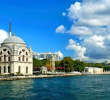 Bosphorus and Dolmabahce Mosque, Istanbul, Turkey by Radoslav Stoilov