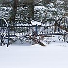 Old Farm Cultivator covered in Snow by Mike Koenig