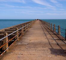 Newhaven Pier by Guy  Berresford