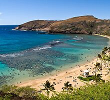 Beautiful Hanauma Bay, Hawaii by Speedy78