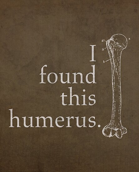 I Found This Humerus Humor Pun Medical Science Poster by scienceispun