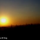 Sun is setting on the Highveld by Mariaan M Krog Fine Art Portfolio