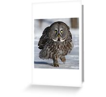 Maybe if I'm real quiet..... Greeting Card