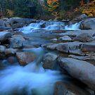 White Mountains Autumn by Cameron B