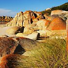 Bay of Fires by Imi Koetz