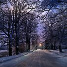 A Walk on a Winter Evening by Kathy Weaver