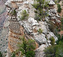 Rock Formations of South Rim Grand Canyon by Lee Craig
