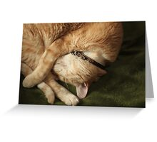 Curled Up Gumbo Greeting Card
