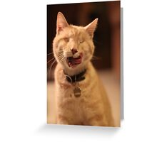 Licking Gumbo Greeting Card