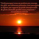 2 Cor. 4:17,18 fr2 by hummingbirds