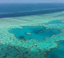 Birds eye view - Great Barrier Reef by Mark Fitzpatrick
