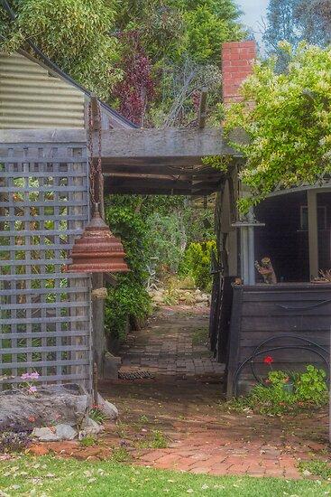 Pam's Garden by Elaine Teague