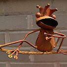 Rusty Frog by virginian
