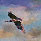 Grace of the Wild by Deborah  Benoit