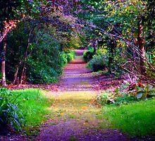 Sacred Ireland 2014 by LisaWildwood